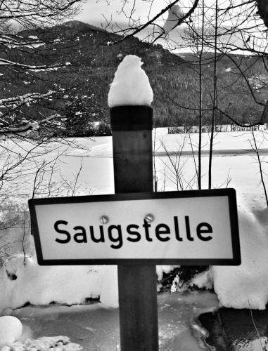 Saugstelle Rottach sw beschn
